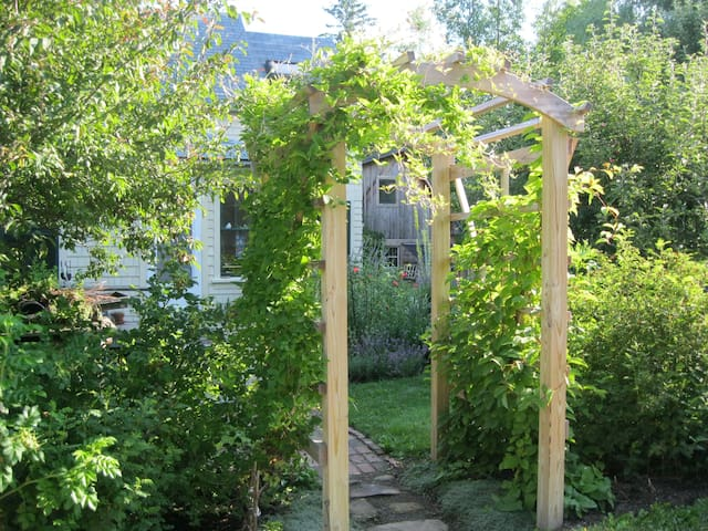 Entry from drive with natural plantings for privacy in the summer