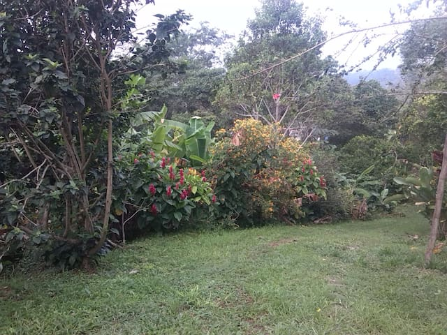 Casa campestre,  Cachipay-Anolaima - Cachipay - Srub