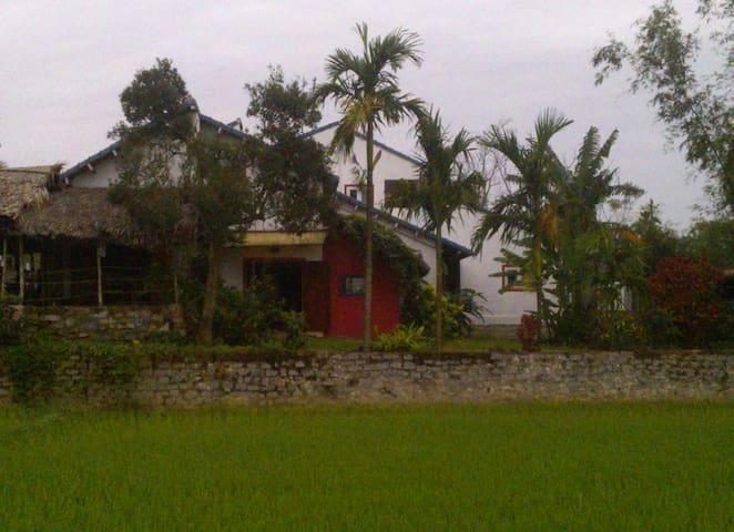 Anh Hai garden