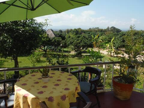 Beautiful Chiang Mai Farmstay