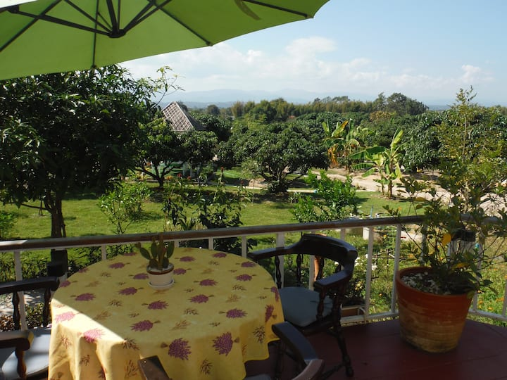 Beautiful Chiang Mai Farmstay