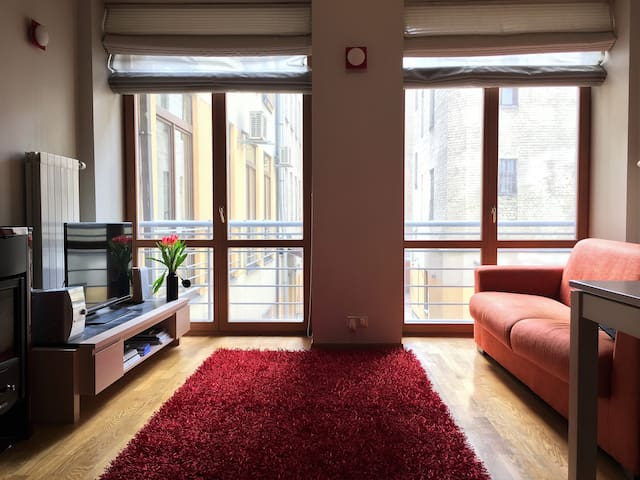 Modern apartment in a prestigious part of the city