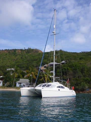 Skyran catamaran in the Grenadines