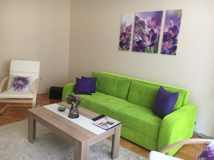 Comfy & quiet apartment- old Town, free parking