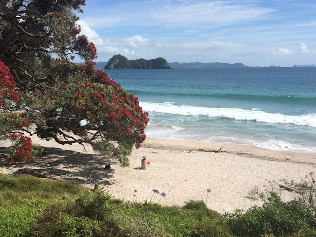 Cathedral Cove Beach Apartment - Hahei - Lägenhet