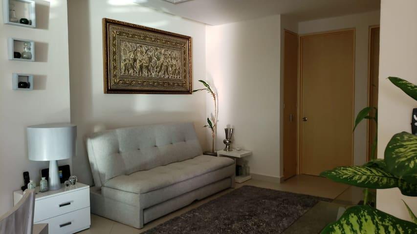 Comparte Penthouse en Zona Hotelera frente Laguna