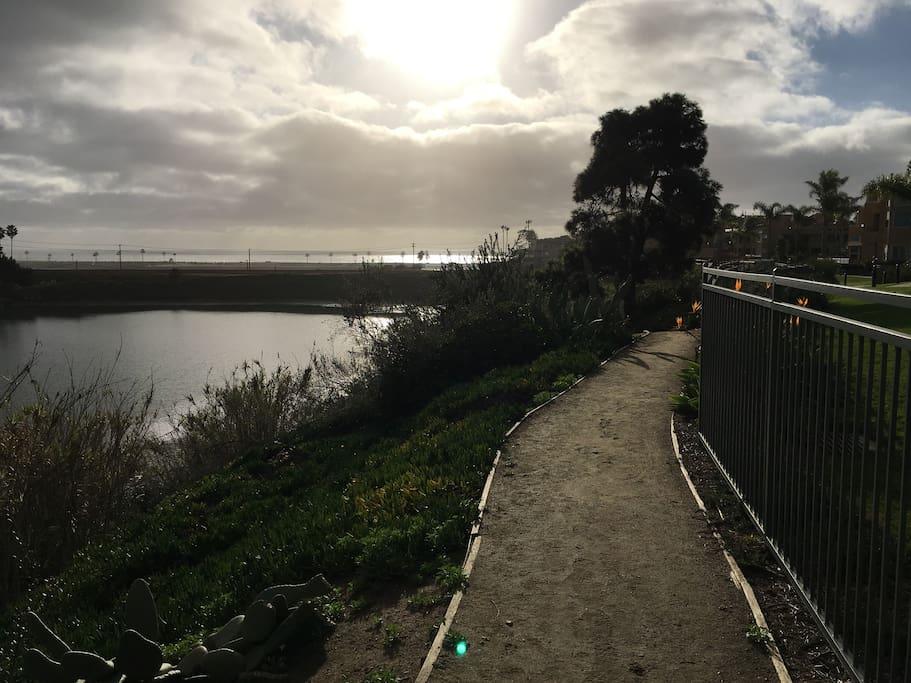 Walking Path/Lagoon