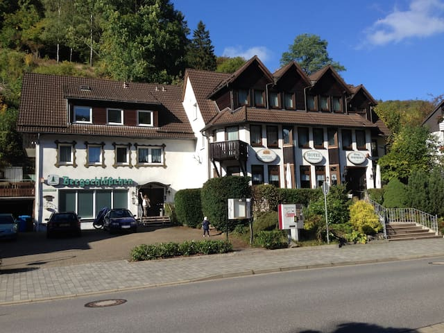 Nice Guesthouse for 14 Persons in Harz, free Wifi - Zorge - Maison