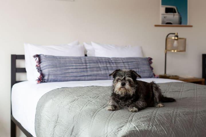 Cozy, Modern Room | Spoke and Vine Motel