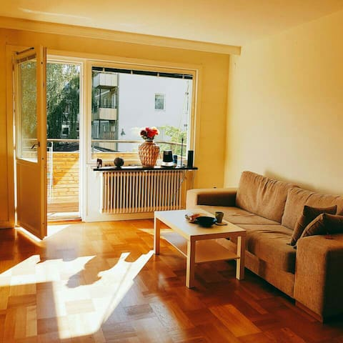 Miss Park's Cozy Apartment2 :) - Stockholm