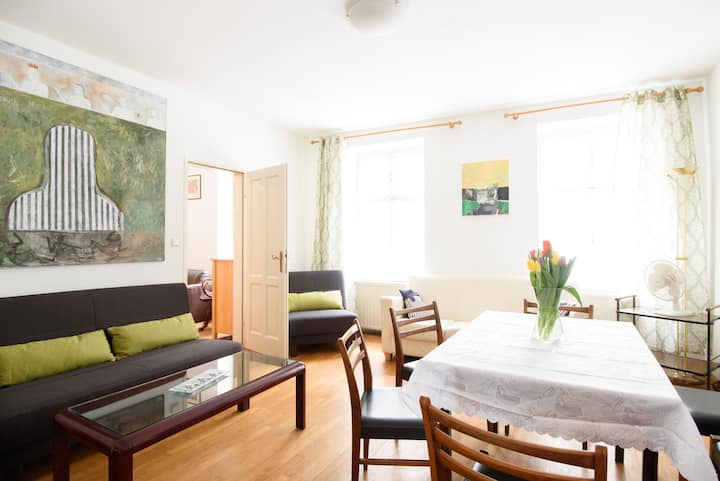Central pedestrian area, spacious apartment (80m²)