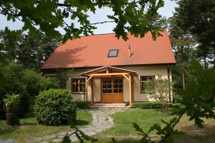 Ostseehaus-Strandkiefer - Dierhagen - Hus