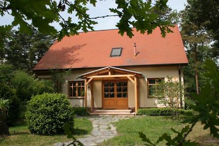 Ostseehaus-Strandkiefer - Dierhagen - Haus