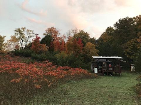 Hill Valley Farm Yurt Experience