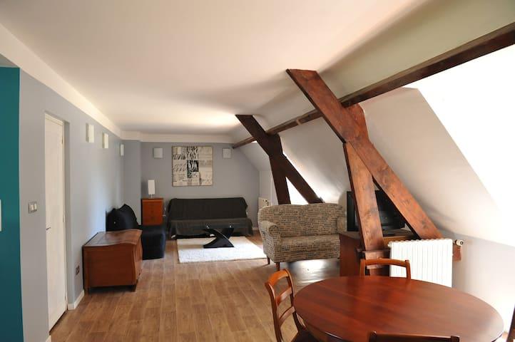 CHÂTEAU DE VAUX - Vitry-aux-Loges - Castle