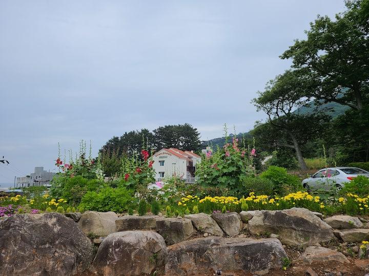 거제섬 에메랄드빛 바다와 코발트빛 하늘아래 수국촬영지로 유명한 몽돌바닷가 유럽풍 별장펜션