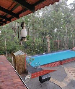 Serene mist resort Chikmagalur Aldur