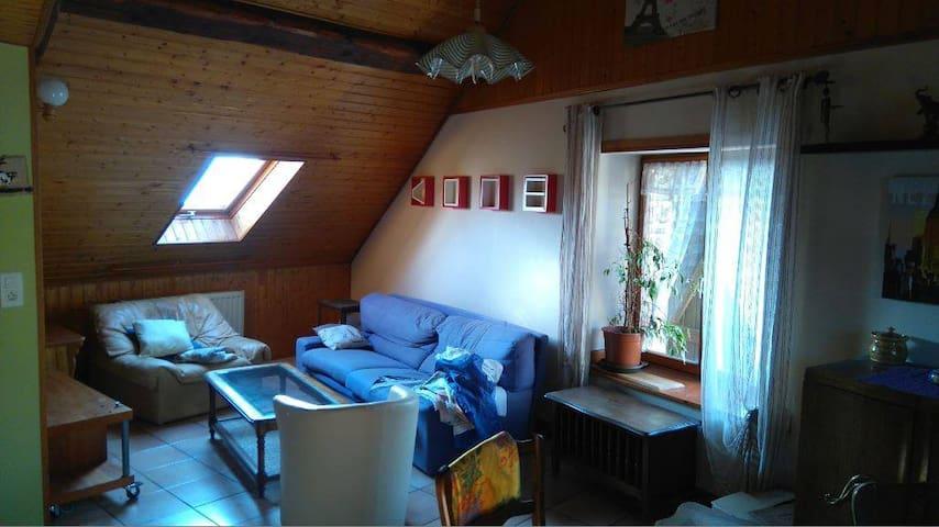 Appartement chaleureux type chalet - Belfort - Wohnung