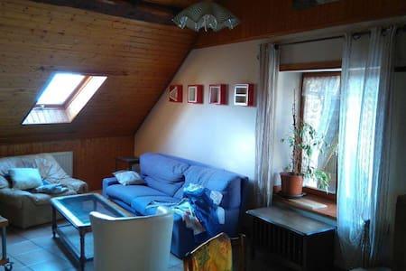 Appartement chaleureux type chalet - Belfort - Apartament