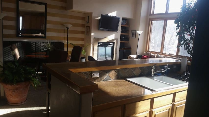 private two story extra large one bedroom condo - Edwards - Apartment