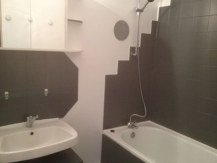 Salle de Bain (baignoire lavabo et WC dans la même pièce)