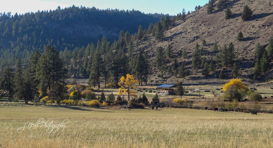 Authentic, cozy  Bunkhouse at Wine Down Ranch - Prineville - Kabin