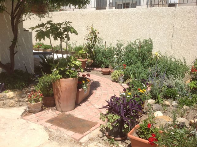 Lovely house with small garden and pool. - Roujan - Talo