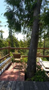 """360° Rainforest view Tree-Top Tower """"The Seer"""" !"""