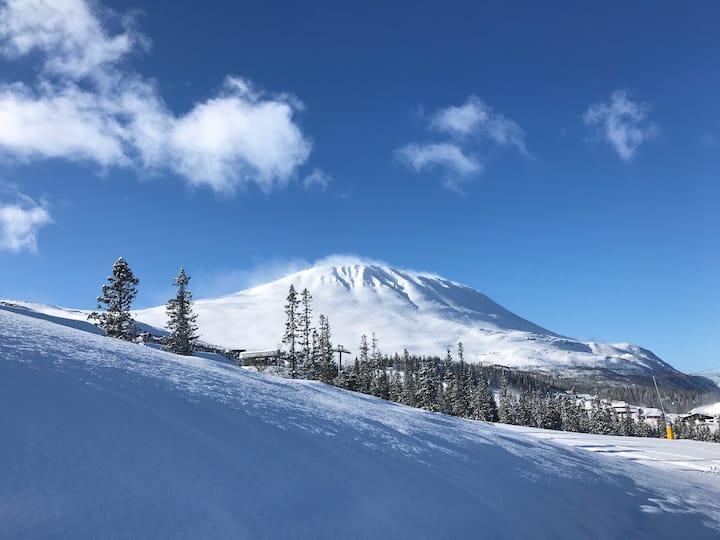 Ny Hytta ski in / ut både alpint och längdåkning