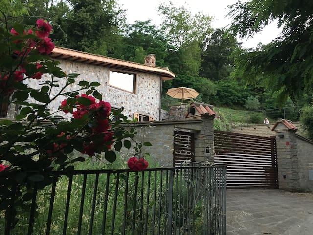 Villa l'Uliveto