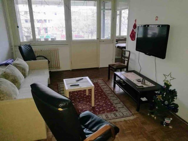 Lovely 1 bedroom aprt. near Sava river in Belgrade