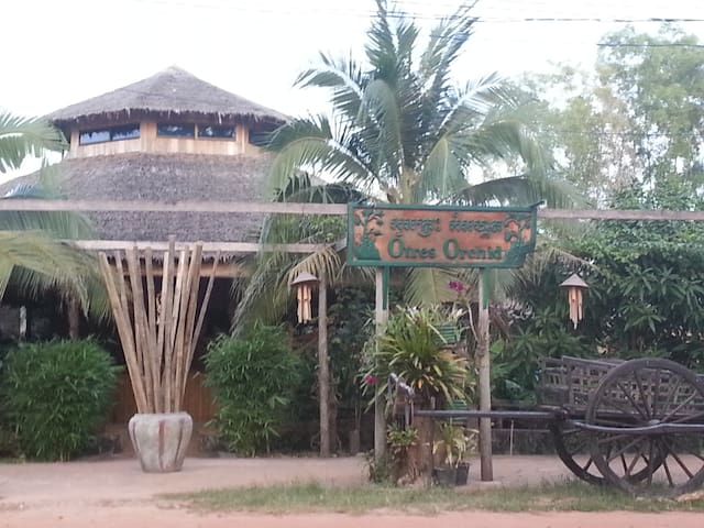 Otres Orchid, Best on Otres Beach - Krong Preah Sihanouk - Boutique hotel