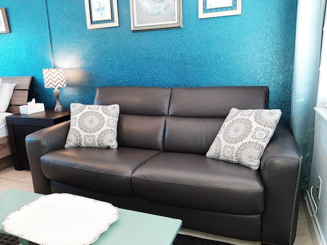 brand new leather sleeper sofa, it doesn't have the annoying bar digging in your hip all night. VERY comfortable.