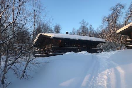 Mysig timmerstuga i snösäkra Tänndalen vecka 6
