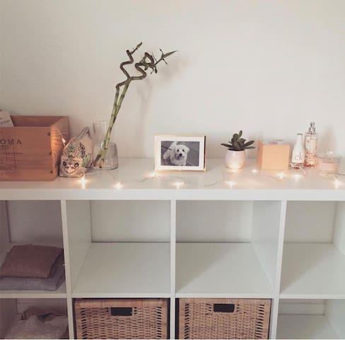 Private Room in Flat-sharing near UN Plaza Geneva