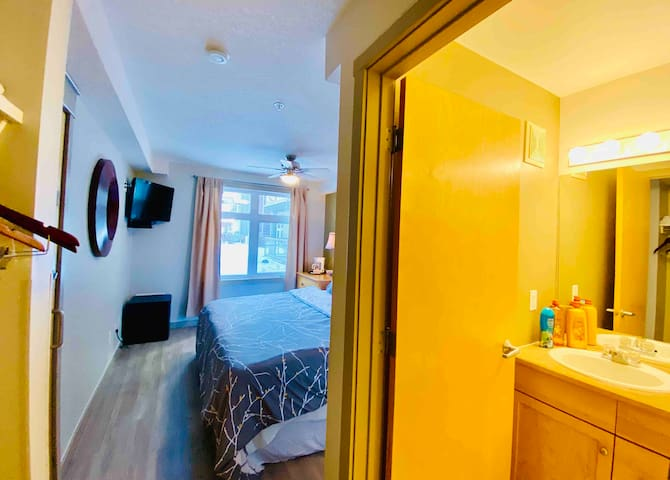 Deluxe Hotel  Room King Bed 1 Bath w/  HotTub&Gym