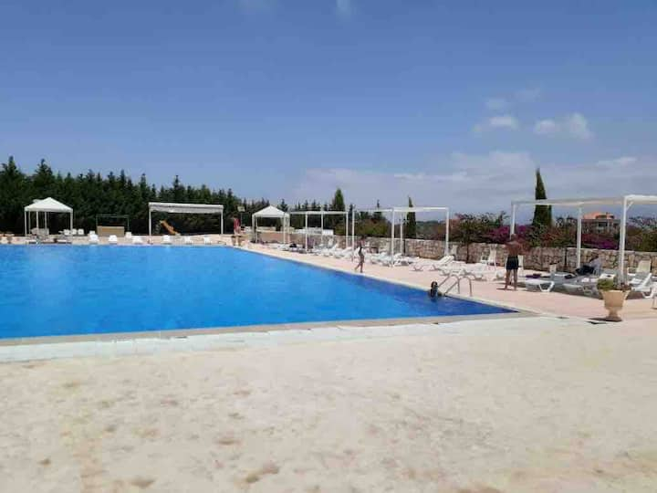Perfect for Groups   6 Suites   Pool Access