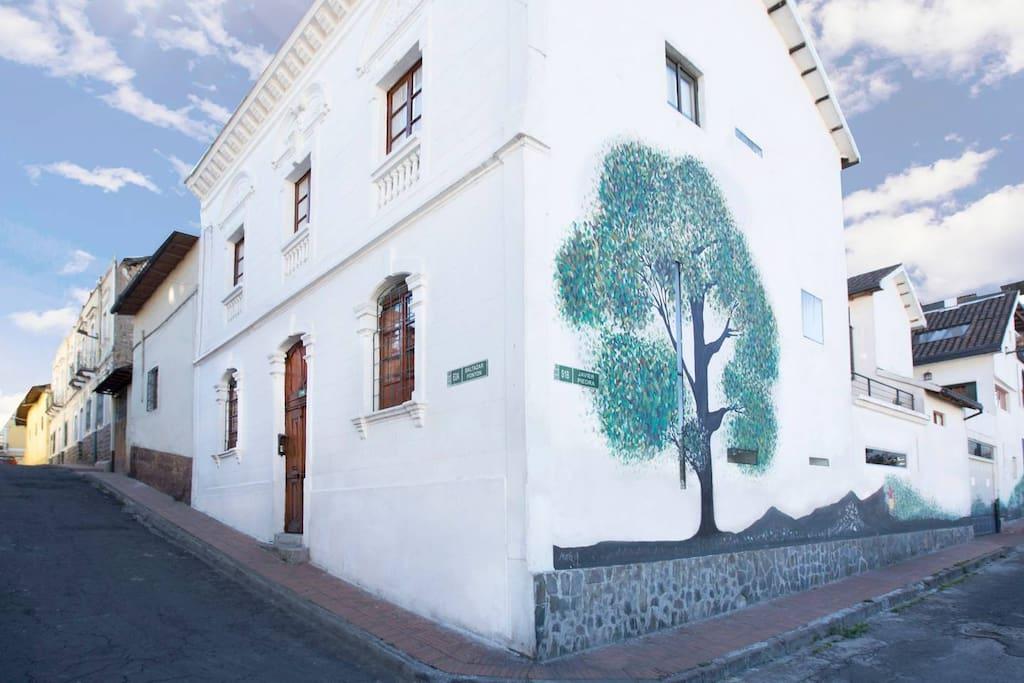 Corner of Casa LunaLoma