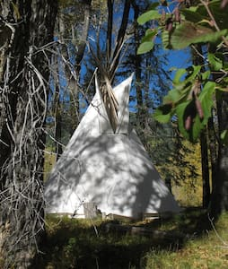 Wilderness B&B - Tipi with Double 2 - Pagosa Springs