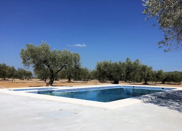 Villa 4 ch avec piscine privée et salons d'été
