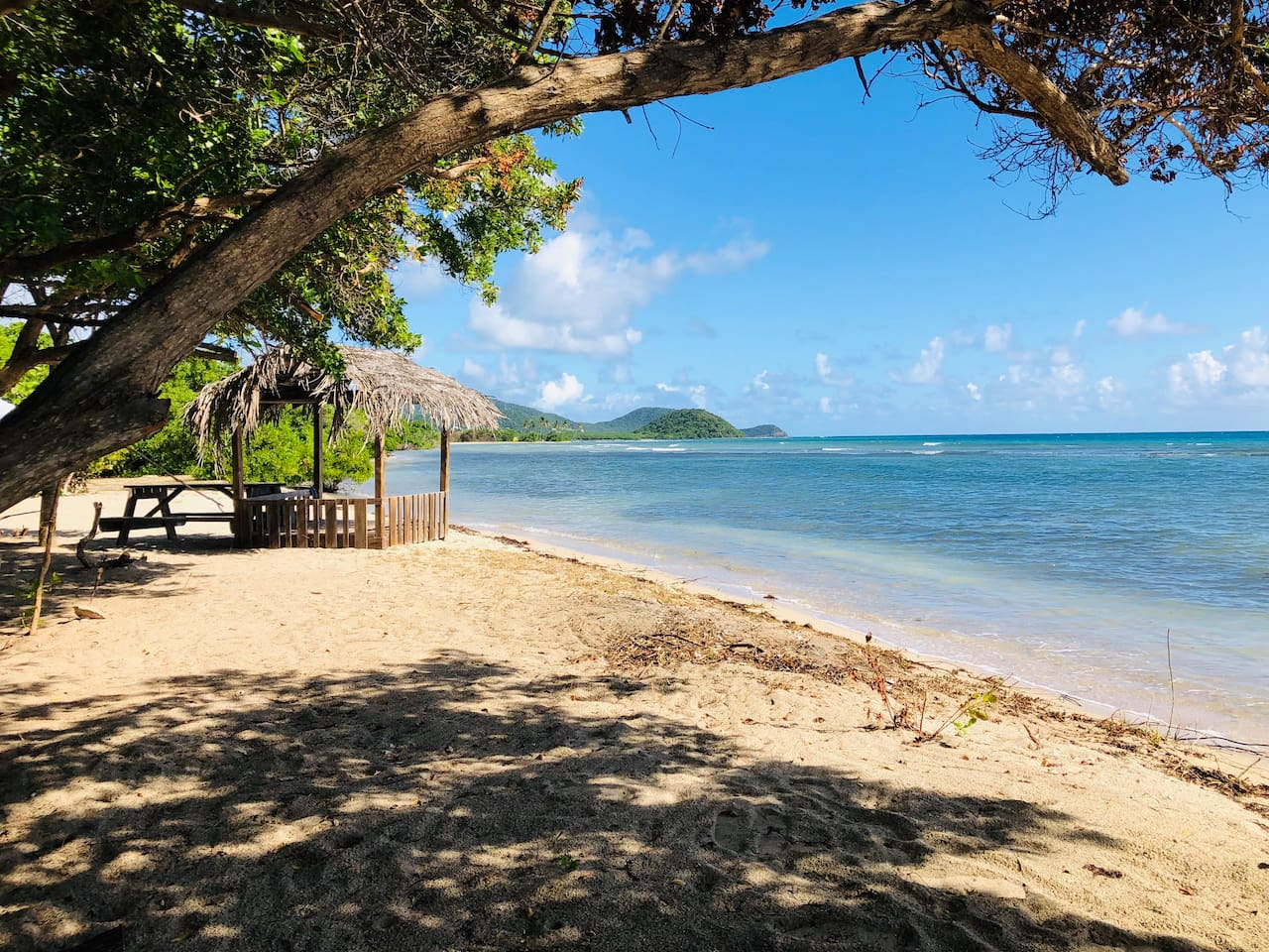 This is your PRIVATE coconut thatched cabana & picnic table next the Caribbean Sea just 100m stroll from your apartment on Cades Bay sandy beach comprising 3 bays inside of the Cades Bay Marine Reserve.  Panoramic views & snorkeling, Fly fishing...
