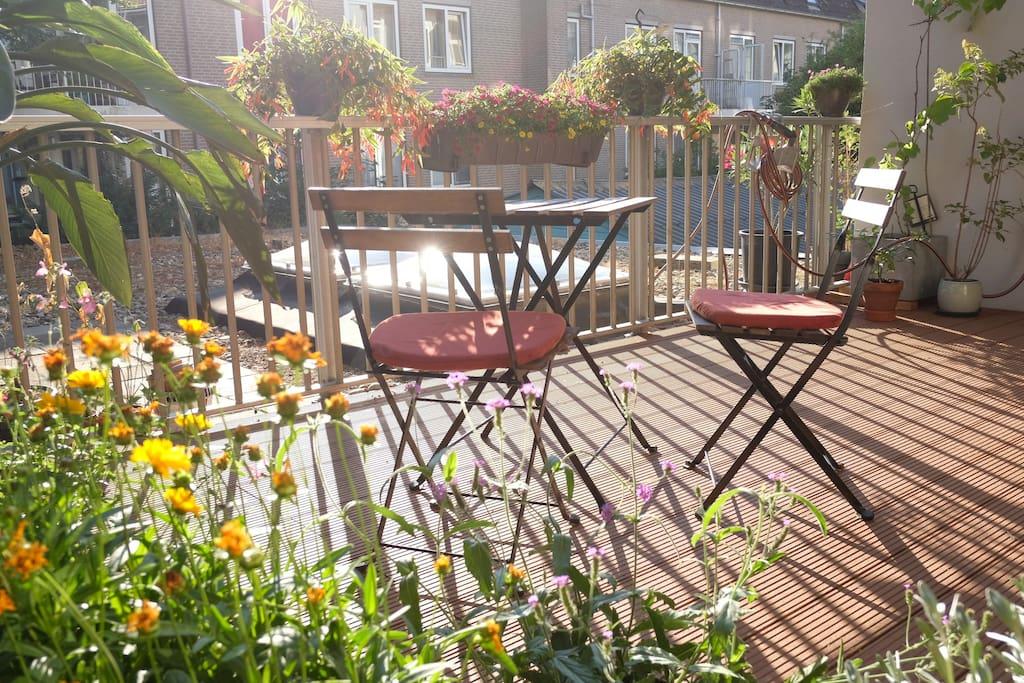 Super sunny private terrace backside.