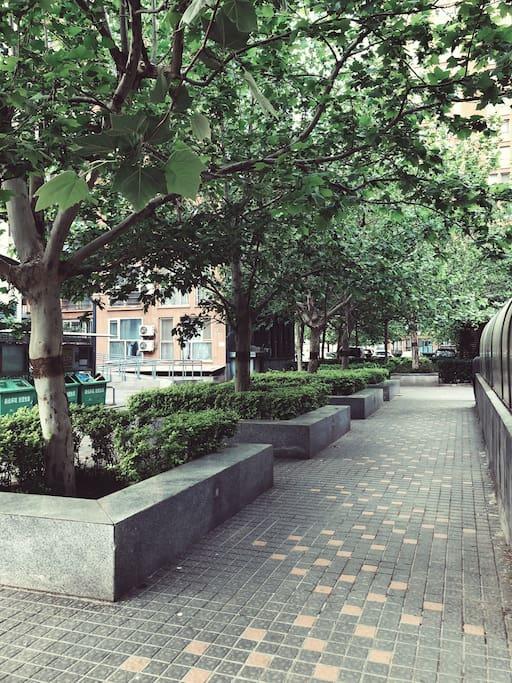 家附近的环境,很多树,位于一楼下楼方便