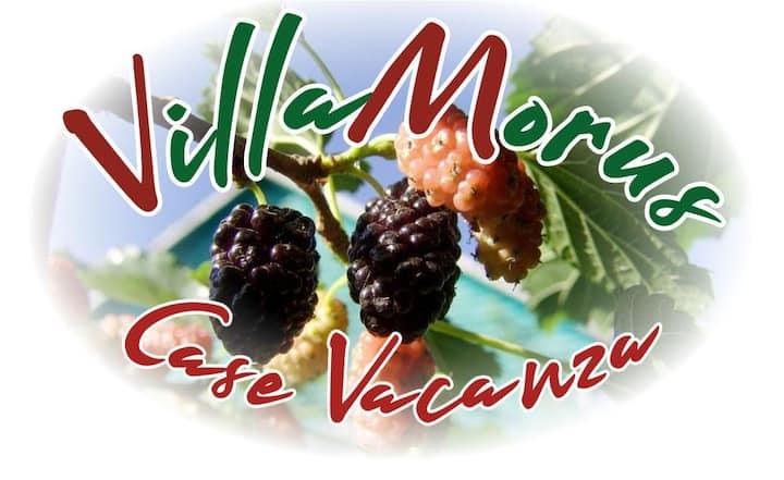 Villamorus 1