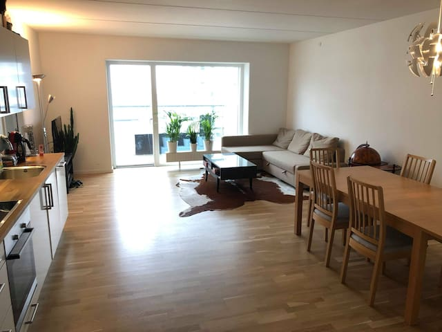 Room for rent in modern and new apartment