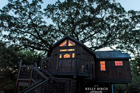 Tree house treehouse lofty lodge - Cottage Grove - Domek na drzewie