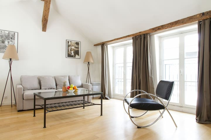 Lovely 1BR Near the Seine Saint Germain Des Pres