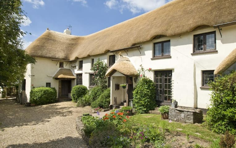 Quiet, Thatched Rural Cottage - Morchard Bishop - House