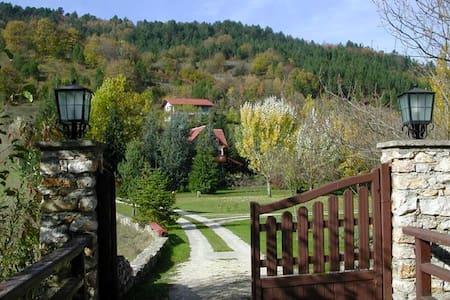 Abant'da Dağ Evinde Özel Kabin Oda - Bolu Merkez