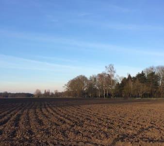 Gezellig boshuisje - Breda